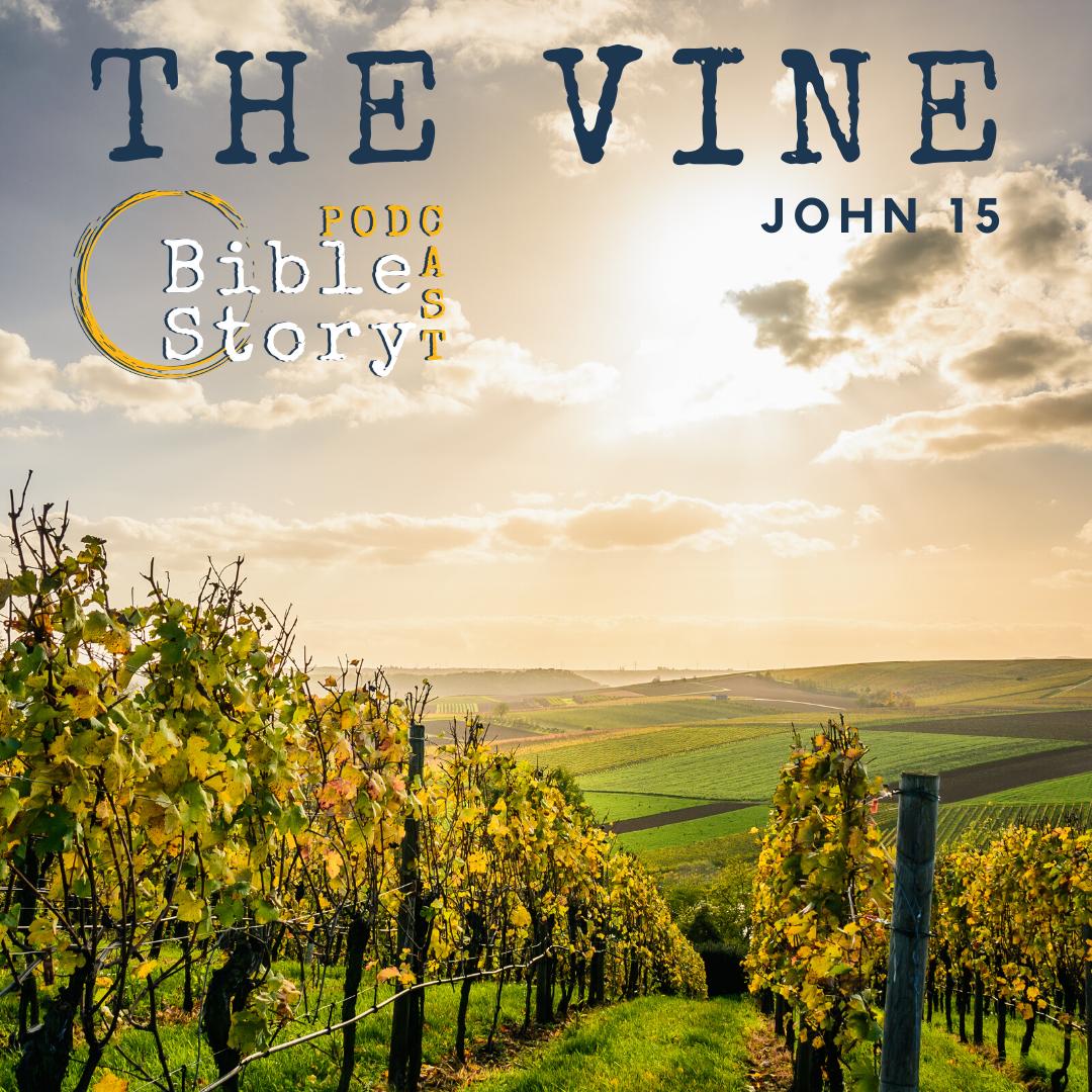 The Vine Image