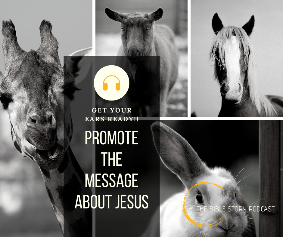 Promote the Message About Jesus